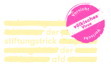 stiftungstrick-der-afd.com